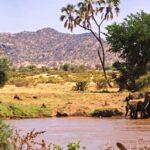 Samburu-Reserve