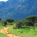 Tsavo-West-baboons