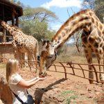 giraffe-center-nairobi